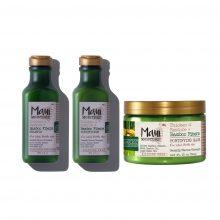 پک محصولات بامبو مائویی (شامپو، نرم کننده و ماسک مو)